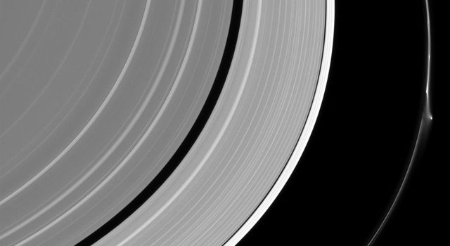 NASA's Cassini spacecraft spies a bright disruption (features known as 'jets') in Saturn's narrow F ring suggesting it may have been disturbed recently, though not by Pandora which lurks nearby at lower right.