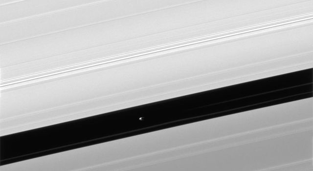 Pan and moons like it have profound effects on Saturn's rings. The effects can range from clearing gaps, to creating new ringlets, to raising vertical waves that rise above and below the ring plane, as seen by NASA's Cassini spacecraft.