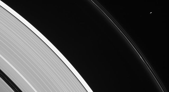 Pandora, seen here by NASA's Cassini spacecraft, in isolation beside Saturn's kinked and constantly changing F ring.