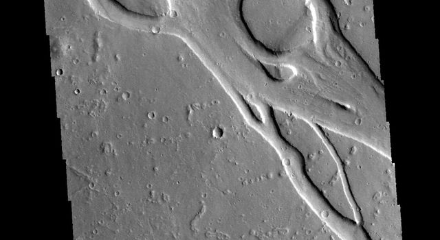This image captured by NASA's 2001 Mars Odyssey spacecraft shows a portion of Hebrus Valles.