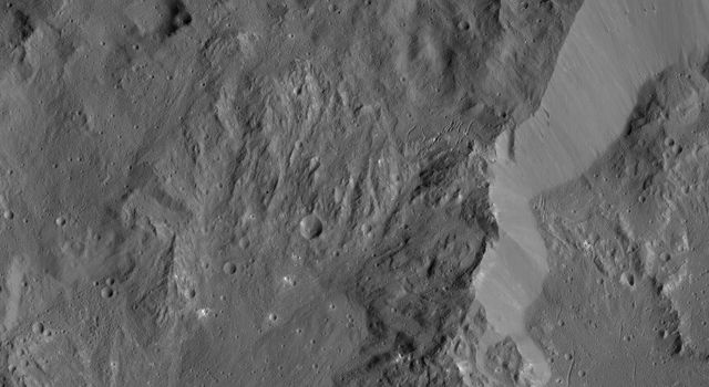 This image shows the rim of Ikapati Crater on Ceres, which lies in the dwarf planet's northern hemisphere. Groupings of roughly parallel, narrow, linear fractures can be seen inside and outside the crater.