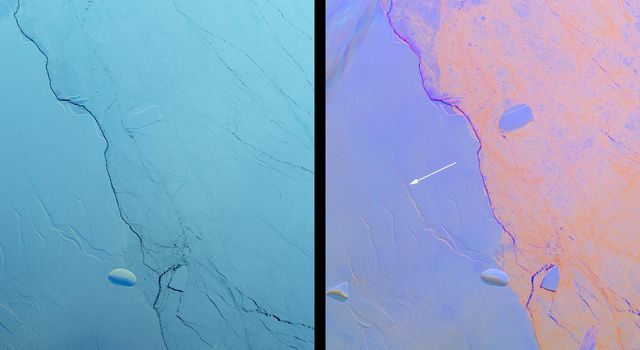 Growing Crack in Antarctica's Larsen C Ice Shelf Spotted by NASA's MISR