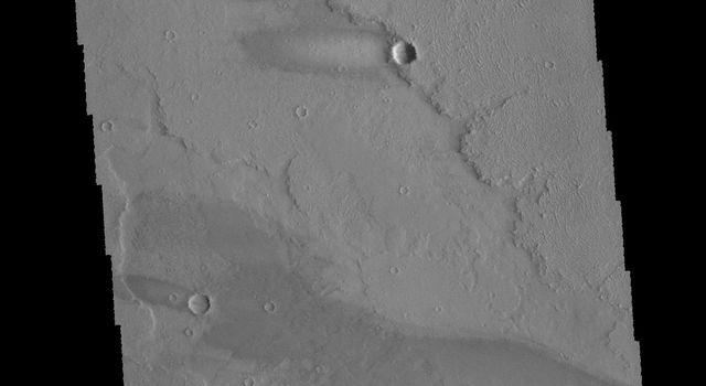 This image captured by NASA's 2001 Mars Odyssey spacecraft shows part of Daedalia Planum as well as several windstreaks.