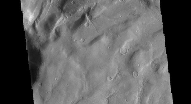 This image captured by NASA's 2001 Mars Odyssey spacecraft shows several channels dissecting the higher elevations of Claritas Fossae.