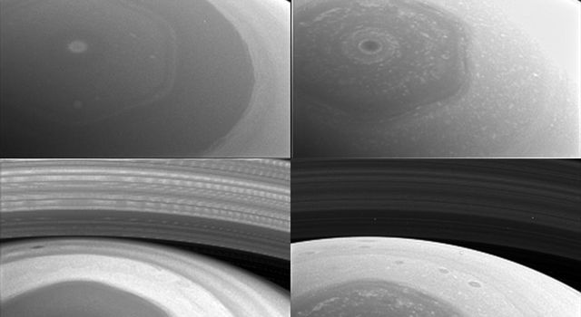 This collage of images from NASA's Cassini spacecraft shows Saturn's northern hemisphere and rings as viewed with four different spectral filters; each is sensitive to different wavelengths of light and reveals clouds and hazes at different altitudes.