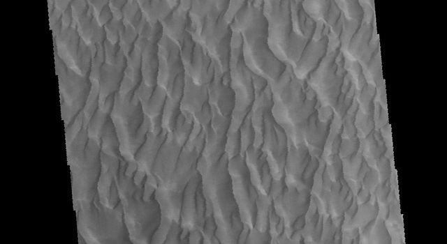 This image captured by NASA's 2001 Mars Odyssey spacecraft shows part of the large sand sheet within Proctor Crater.