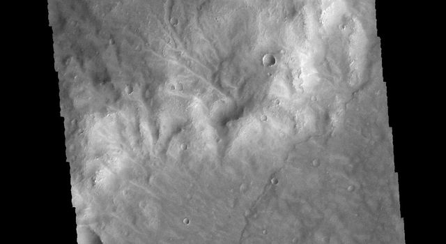 Numerous channels dissect the higher elevation material at the top of this image. This image captured by NASA's 2001 Mars Odyssey spacecraft is located in Noachis Terra.