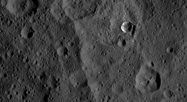 dawn xmo2 image 30