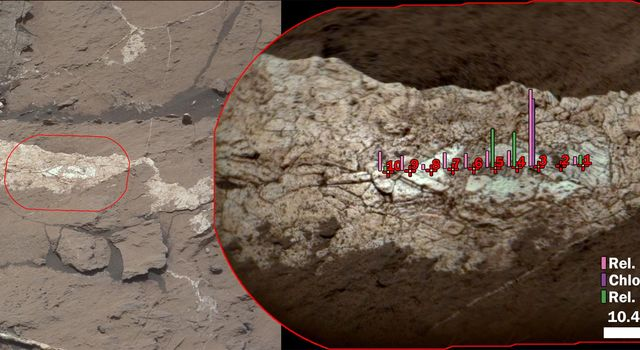 Boron, Sodium and Chlorine in Mineral Vein 'Diyogha,' Mars