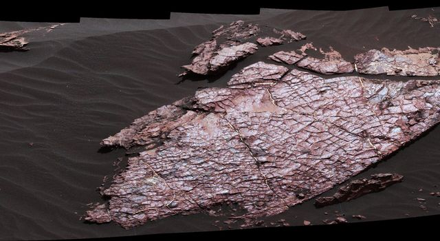 This view of a Martian rock slab called 'Old Soaker,' which has a network of cracks that may have originated in drying mud, comes from the Mast Camera (Mastcam) on NASA's Curiosity Mars rover.