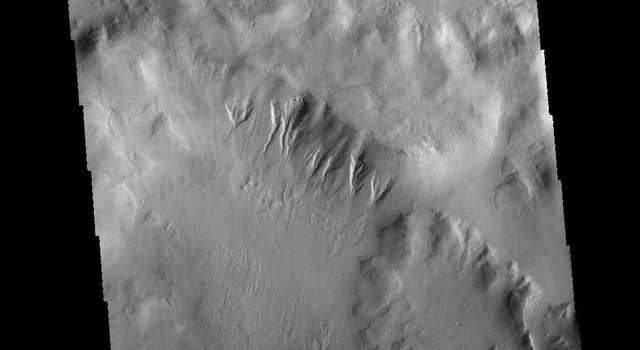 This image from NASA's 2001 Mars Odyssey spacecraft is of an unnamed crater in Terra Sirenum. There are gullies dissecting part of the crater rim, and small dunes on the crater floor.