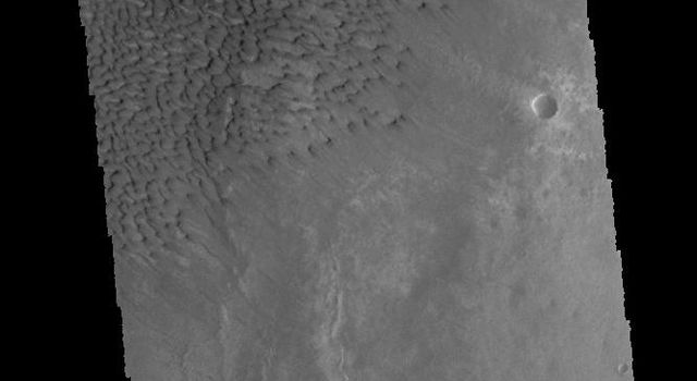 This image captured by NASA's 2001 Mars Odyssey spacecraft shows sand dunes on the floor of Sumgin Crater.