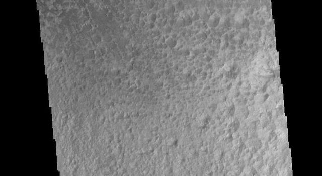 This image captured by NASA's 2001 Mars Odyssey spacecraft shows a field of sand dunes on the floor of Hale Crater.