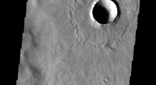This image from NASA's 2001 Mars Odyssey spacecraft shows the same young crater from earlier this week. In this image we can see how the thin radial ejecta has lapped up and over the ridge at the bottom of the image.