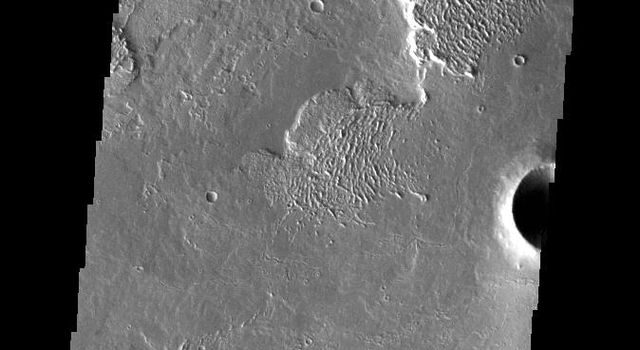 This image captured by NASA's 2001 Mars Odyssey spacecraft shows a small portion of Daedalia Planum.