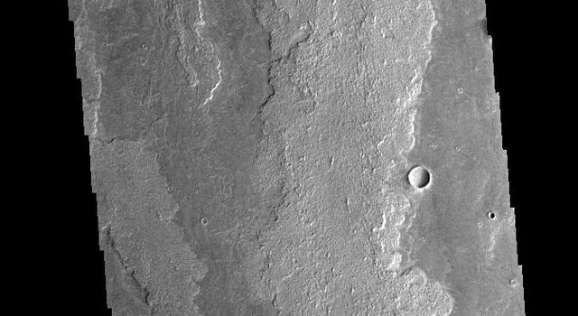 This image captured by NASA's 2001 Mars Odyssey spacecraft shows a portion of Daedalia Planum, an extensive volcanic plain comprised of flows from Arsia Mons.