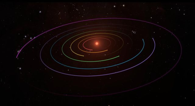 TRAPPIST-1 Planetary Orbits and Transits