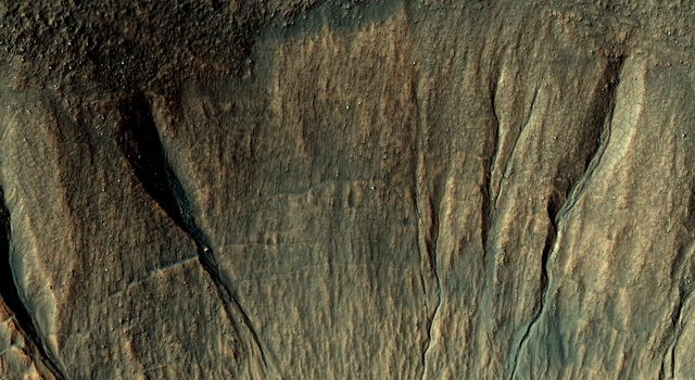 This image captured by NASA's Mars Reconnaissance Orbiter covers a portion of a typical impact crater in Terra Sirenum. Some of the gully fans have a bluish color: these are probably quite recent deposits, less than a few tens of years old.