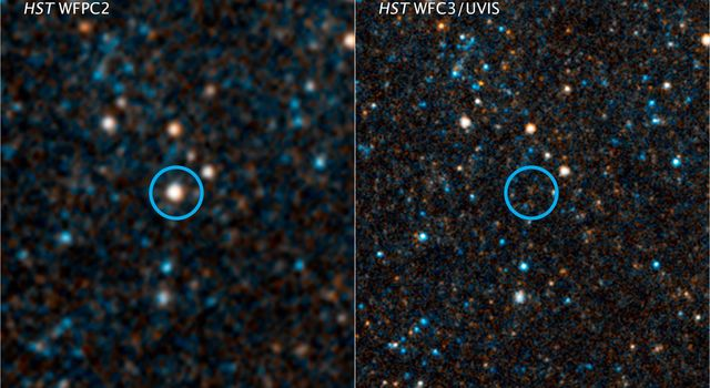 Massive Star Goes Out With a Whimper Instead of a Bang