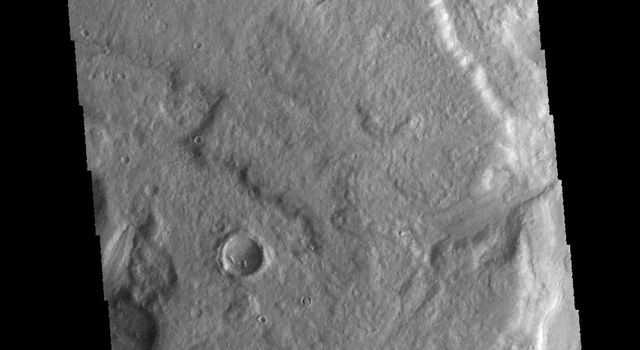 This image captured by NASA's 2001 Mars Odyssey spacecraft shows a short section of Reull Vallis.