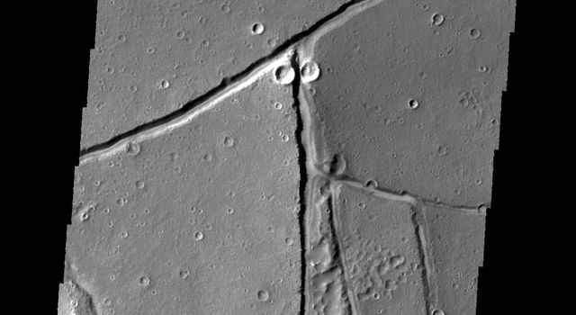 NASA's 2001 Mars Odyssey spies what looks like a praying mantis looking back at the spacecraft.