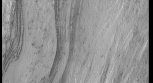 This image captured by NASA's 2001 Mars Odyssey spacecraft looks a plank of wood, with a beautiful grain to it.