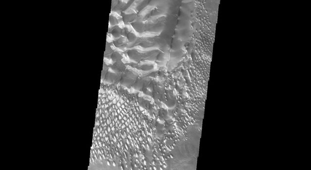 This image captured by NASA's 2001 Mars Odyssey spacecraft shows a slice of the floor of Russell Crater. Russell Crater is located in Noachis Terra.