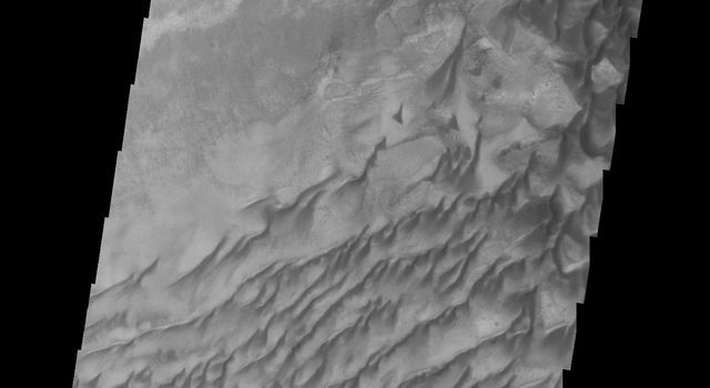 This image captured by NASA's 2001 Mars Odyssey spacecraft shows the western part of the dune field on the floor of Russell Crater.