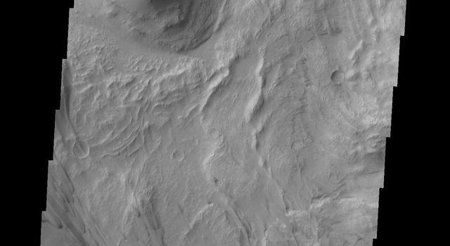 This image captured by NASA's 2001 Mars Odyssey spacecraft is located in eastern Coprates Chasma. The branching features near the bottom of the image are spurs of rock in the cliff face.