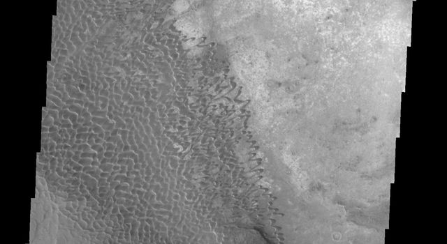 This image captured by NASA's 2001 Mars Odyssey spacecraft shows part of the Nili Patera dune field. Winds are blowing the dunes across a rough surface of regional volcanic lava flows.