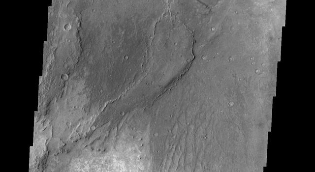 This image from NASA's 2001 Mars Odyssey spacecraft shows part of the Nili Patera dune field. Winds are blowing the dunes across a rough surface of regional volcanic lava flows. The paterae are calderas on the volcanic complex called Syrtis Major Planum.