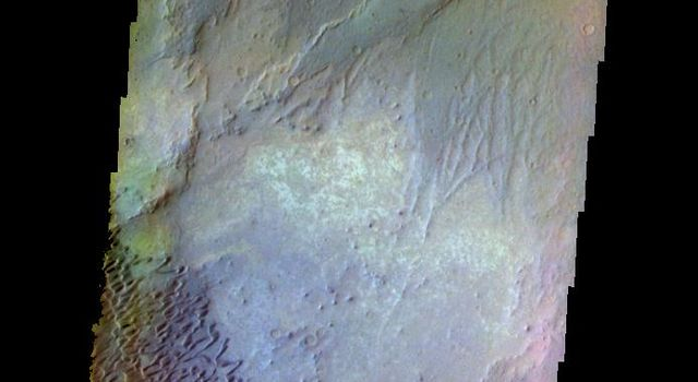 This false color image from NASA's 2001 Mars Odyssey spacecraft shows part of the Nili Patera dune field. The paterae are calderas on the volcanic complex called Syrtis Major Planum.
