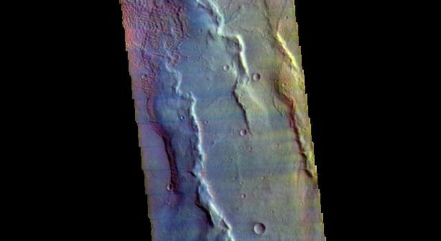 This false color image from NASA's 2001 Mars Odyssey spacecraft covers the region from Nili Patera at the top of the frame to the dunes near Meroe Patera. The paterae are calderas on the volcanic complex called Syrtis Major Planum.