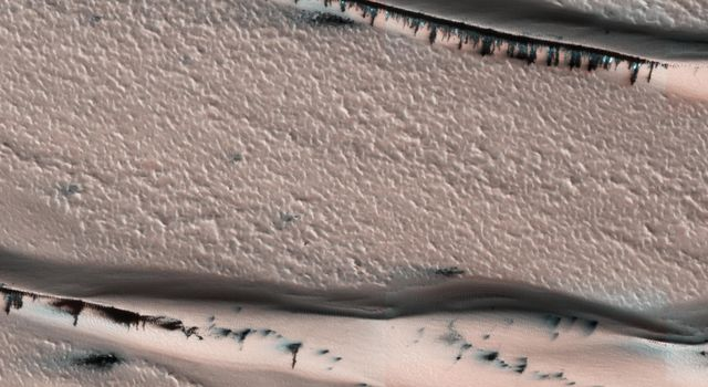 This image from NASA's Mars Reconnaisance Orbiter (MRO) shows a dune field in Chasma Boreale, which is a large trough that cuts into the North Polar ice cap.