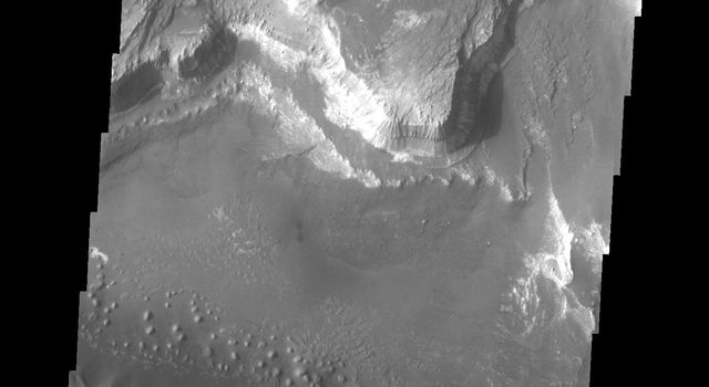 Melas Chasma is part of the largest canyon system on Mars, Valles Marineris. This image of the southern section of the canyon captured by NASA's 2001 Mars Odyssey spacecraft shows a large region of sand dunes.