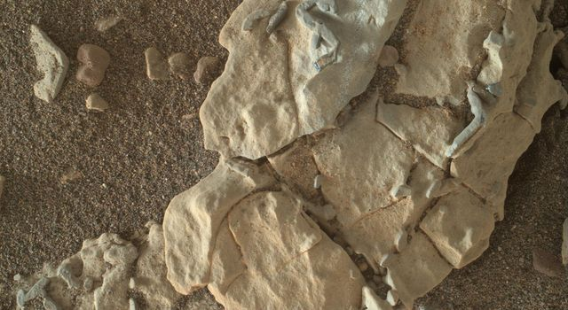 Stick-Shape, Rice-Size Features on Martian Rock