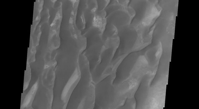 This image from NASA's 2001 Mars Odyssey spacecraft of the floor of Kaiser Crater contains several sand dune shapes and sizes. Kaiser Crater is located in the southern hemisphere in the Noachis region west of Hellas Planitia.