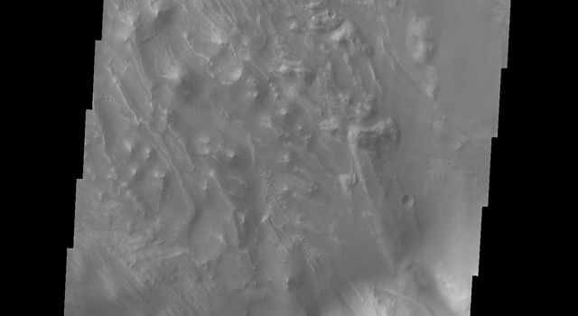 This image captured by NASA's 2001 Mars Odyssey spacecraft shows part of the floor of Tithonium Chasma. Eroded materials cover most of the image.