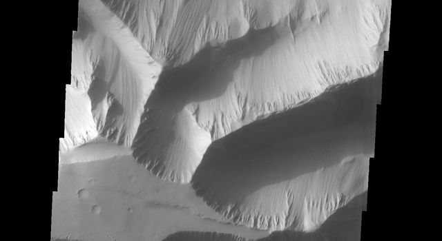 Tithonium Chasma has numerous large landslide deposits. At the bottom of this image captured by NASA's 2001 Mars Odyssey spacecraft is the high plateau between Tithonium Chasma and Ius Chasma.