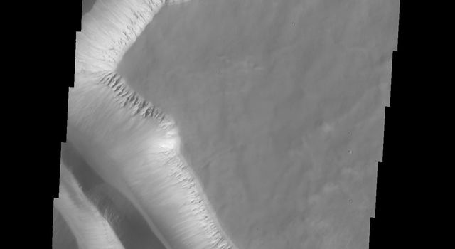 Ius Chasma is unique from the other chasmata of Valles Marineris in possessing mega gullies on both sides of the chasma. The largest mega gullies are located in Sinai Planum. This image was obtained by NASA's 2001 Mars Odyssey spacecraft.