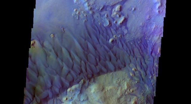 This is a false color image of the dune field in the Arabia Terra crater captured by NASA's 2001 Mars Odyssey spacecraft. In this combination of bands, sand appears as a blue to dark blue color.