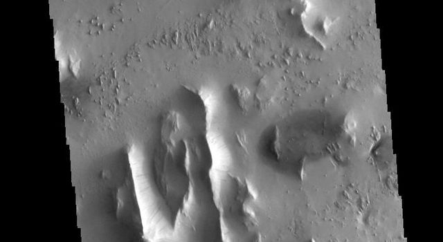 This image from NASA's 2001 Mars Odyssey spacecraft shows several features found in Lycus Sulci including tectonic derived ridges with dark slope streaks and wind etching that is eroding these materials.