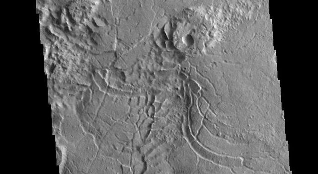 The arcuate fractures and broken up surface shown in this image from NASA's 2001 Mars Odyssey spacecraft is called Avernus Colles. This unique surface has developed on the southeast margin of Elysium Plainitia.