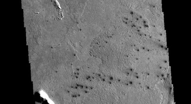 This field of small dark craters captured by NASA's 2001 Mars Odyssey spacecraft is located in southern Elysium Planitia. The dark appearance against the surrounding lava flows suggests that the craters post-date the lava flows.
