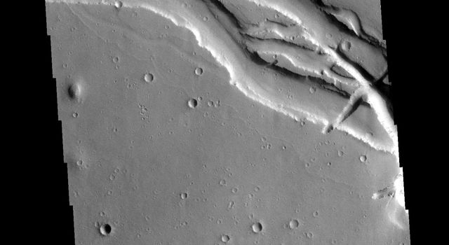 Located west of the Elysium Volcanic complex, Hebrus Valles is a complex channel system that flowed to the north. In this image from NASA's 2001 Mars Odyssey spacecraft the channel features have the appearance of a channel formed by liquid flow.