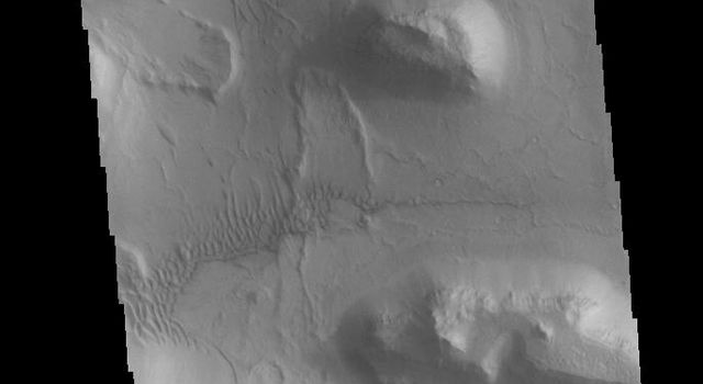 This image captured by NASA's 2001 Mars Odyssey spacecraft shows part of the wall and floor of Coprates Chasma. Several landslide deposits are visible as well as small regions of sand dunes.