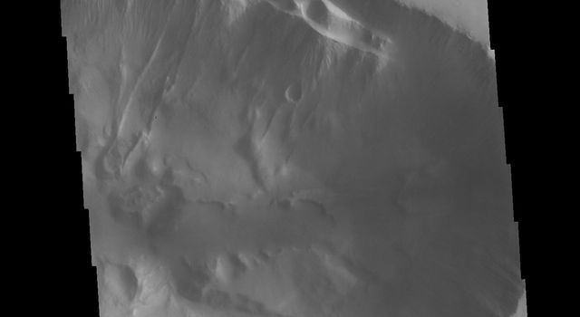 This image from NASA's Mars Odyssey shows the eastern edge of Tithonium Chasma, one of the large valley systems that comprise Valles Marineris. Large fractures are visible on the upper margin of the chasma.