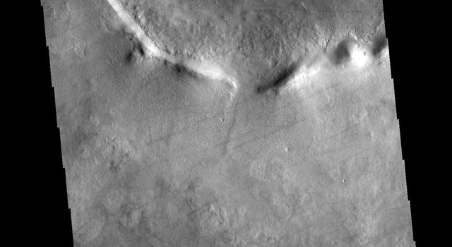 This image from NASA's Mars Odyssey shows dust devil tracks in Utopia Planitia on Mars. The tracks occur where dust devils have scoured the fine materials off the underlying surface.