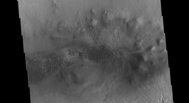 This image from NASA's Mars Odyssey shows the floor of an unnamed crater between Terra Sabaea and Utopia Planitia on Mars containing several regions of sand dunes.