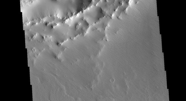 This image from NASA's Mars Odyssey shows part of an unnamed crater on the northwest margin of Daedaia Planum. The interior of the crater has been filled by a material that is now being eroded to create the ridge and valley formation.